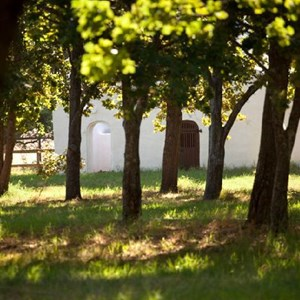 Meerlust Estate - Dovecote & Oaks