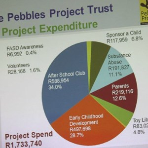 Pebbles AGM 2013 at Warwick - Project Expenditure