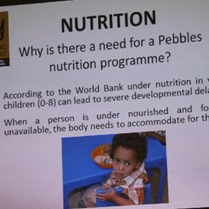 Pebbles AGM 2013 at Warwick - Nutrition