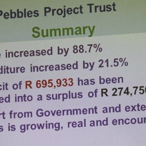 Pebbles AGM 2013 at Warwick - Summary of Finances