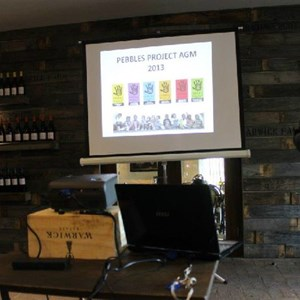 Pebbles AGM 2013 at Warwick - Sophia Warner presenting