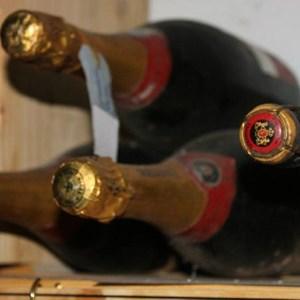 Villiera - wine.co.za visit Sept 2013 (263)