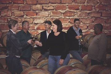 Capaia Wine Tasting & Cellar Tour