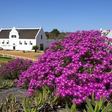 Groote Post Wedding Venue