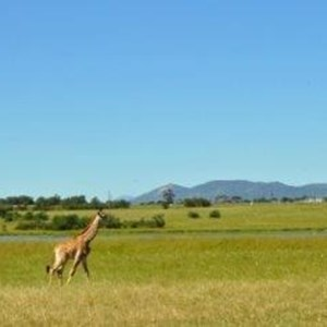 Villiera Wildlife Sanctuary (9).jpg