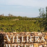 Villiera Wines - General Images