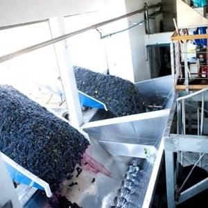 Villiera Harvesting 18 Small.jpg