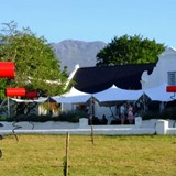 Beetles, Feathers and Gables at Helderberg Wine Festival