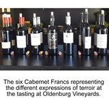 Cabernet Franc's Diversity Showed Off At Annual Carnival