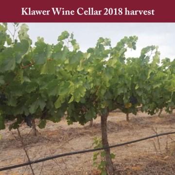Klawer Wine Cellar 2018 Harvest