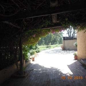 Mandy's Vineyard Cottage - Outside.jpg