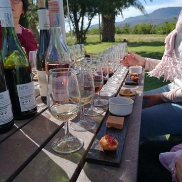 Klawer Wine Cellars introduces Rooibos and Wine Pairing