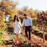 Valentine's Day in the Winelands