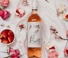 Sizzling Summer Wines & Events