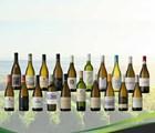 Top 20 finalists for 2020 Sauvignon Blanc SA Top 10