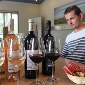 Villiera Wines (30).jpg
