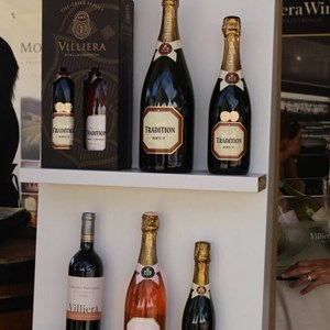 2017 Stellenbosch Wine Fest (21)