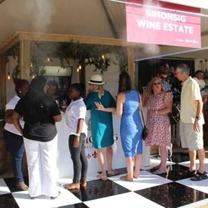 2017 Stellenbosch Wine Fest (38)