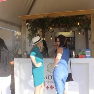 2017 Stellenbosch Wine Fest (40)
