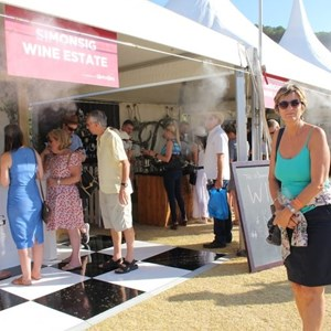 2017 Stellenbosch Wine Fest (39)