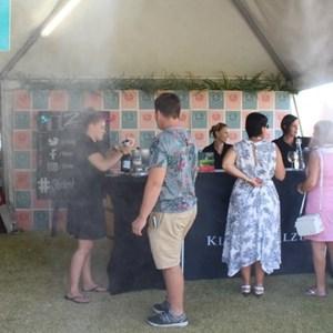 2017 Stellenbosch Wine Fest (55)