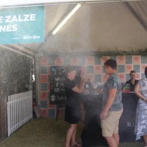 2017 Stellenbosch Wine Fest (56)
