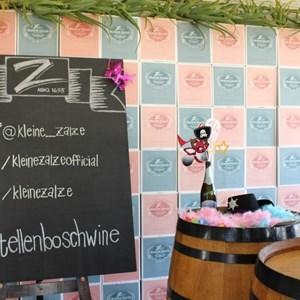 2017 Stellenbosch Wine Fest (58)