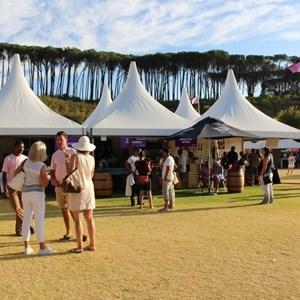 2017 Stellenbosch Wine Fest (82)