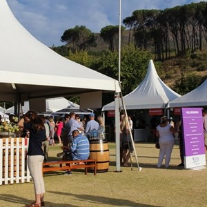 2017 Stellenbosch Wine Fest (84)