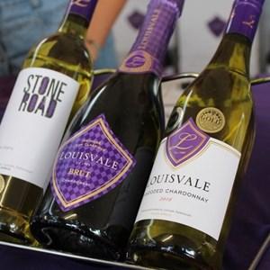 2017 Stellenbosch Wine Fest (105)
