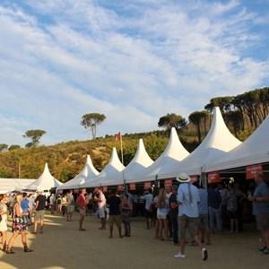 2017 Stellenbosch Wine Fest (110)