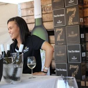 2017 Stellenbosch Wine Fest (115)