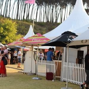2017 Stellenbosch Wine Fest (130)
