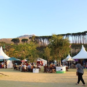 2017 Stellenbosch Wine Fest (131)