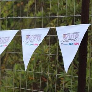 2017 Stellenbosch Wine Fest (149)