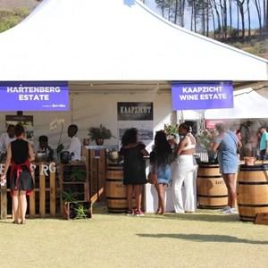 2017 Stellenbosch Wine Fest (163)