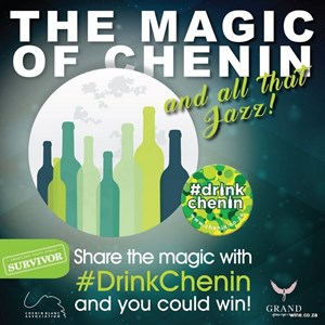 Chenin Blanc Jazz Magic evening (6)