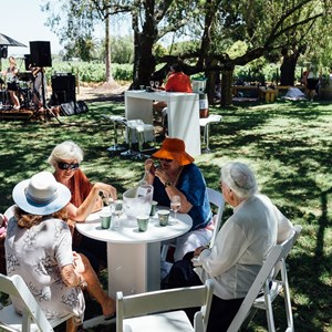 Fizzytherapy Summer Festival at Villiera