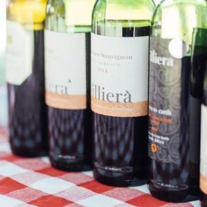 winecoza_villiera_wines_fizzytherapy-40