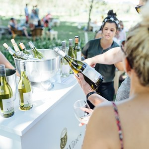 winecoza_villiera_wines_fizzytherapy-156