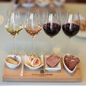 Domaine Grier and Amuse-bouche pairing in Villiera tasting room.jpg square.jpg
