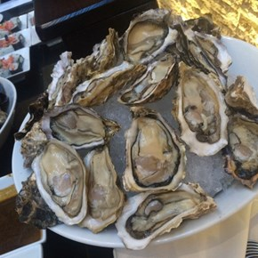 Oysters at Westin