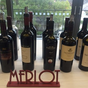 Nederburg Auction 2017 Pre-Auction tasting (11)