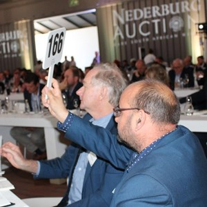 2017 Nederburg Auction (43)