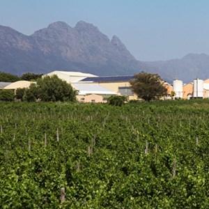 1. Thumbnail Villiera cellar from vineyards 2012