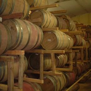 Barrels in Cellar 2