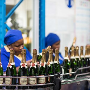 Labelling bubbly before maturation on the cork takes place