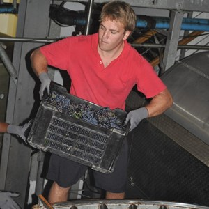 Xander loading a press