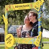 Chenin-igans: Chenin in the Winelands Picnic