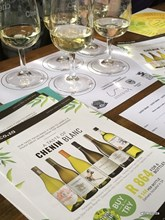 wine.co.za Taste of Chenin pack